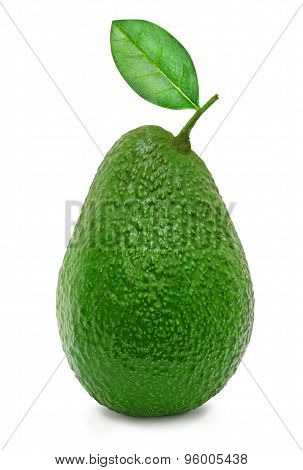 Fresh green ripe avocado