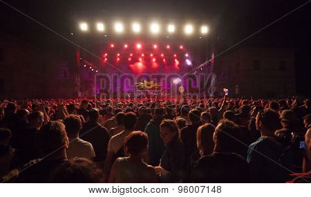 Bontida, Romania - JUNE 27, 2015: Audience having fun during concert at Electric Castle festival, one of the biggest music festivals in Romania