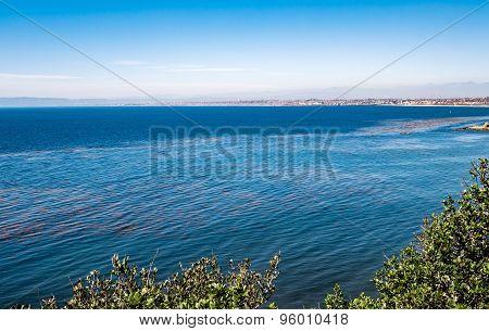 Palos Verdes Ocean View