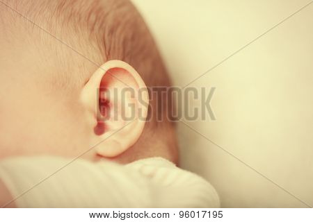 Baby ear, closeup