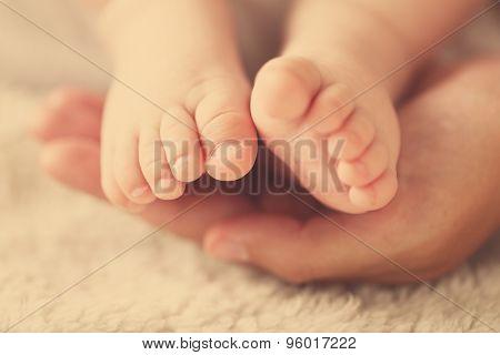 Adult hands holding baby feet, closeup