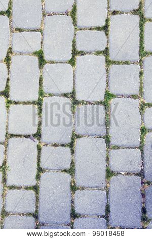 Cobblestone pavement with moss growing between stones