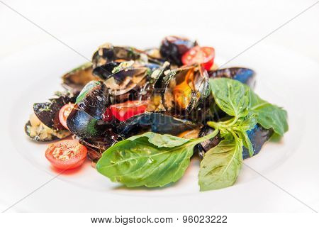 Mussels With Tomato And Herbs
