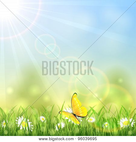 Yellow Butterfly And Flower