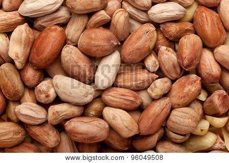 Deshelled Peanuts