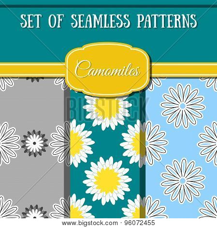 Set Camomiles Patterns