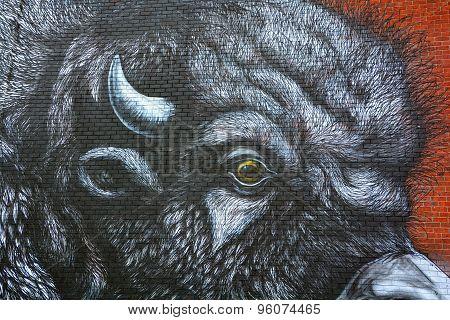 Street art Montreal bison