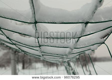 The frozen net