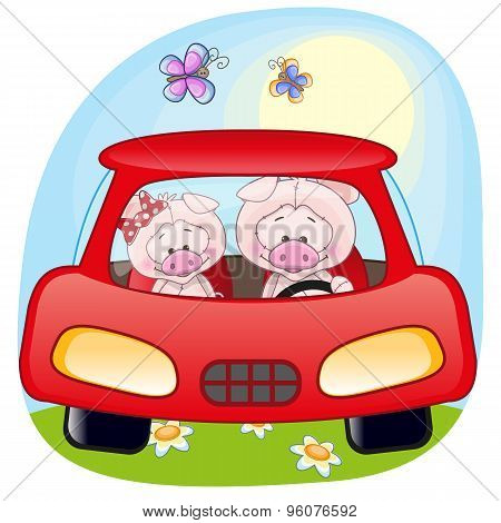 Two Pigs In A Car