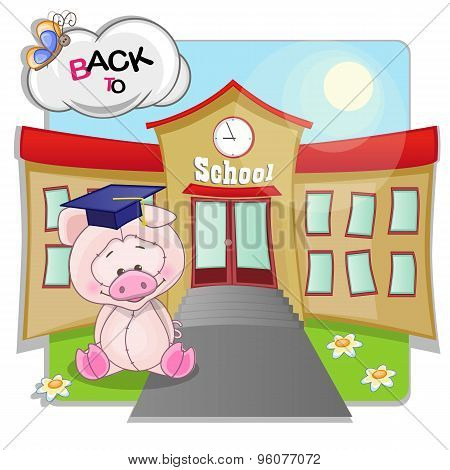 Pig And School