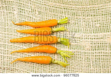 Five fresh carrots with green neatly placed on a hemp fabric