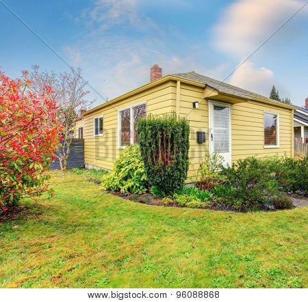 Lovely Greenery In Back Yard Of Modern Home.