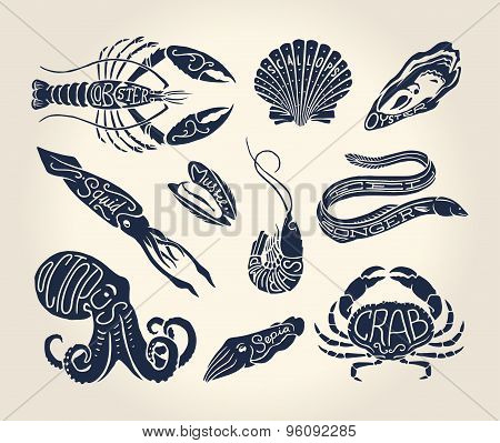 Vintage Illustration Of Crustaceans, Seashells And Cephalopods with names