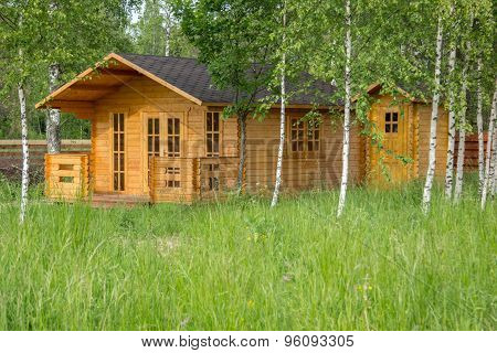 Small Wooden Summerhouse Among Young Birches
