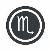 picture of scorpio  - Image of Scorpio zodiac symbol in circle - JPG