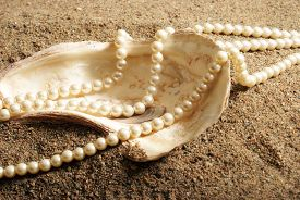 picture of pearl-oyster  - Oyster shell with pearls on a sandy beach.