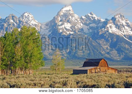 Barn In Tetons