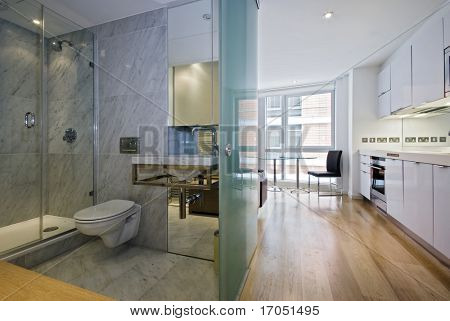 a kitchen, diner and bathroom view of a studio flat