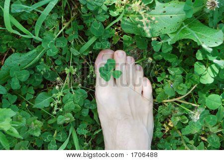 Feet And Shamrock