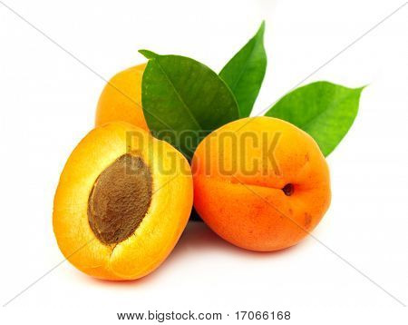 Fresh apricot on white background