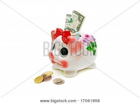 piggy bank and money on a white background