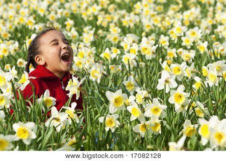 Eine schöne junge gemischte Abstammung-Mädchen spielen in einem Feld von Narzissen