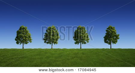 3d rendering of a green field 4 tree on a row