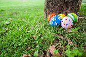 Painted Easter eggs hidden on the grass behind a tree trunk, ready for the easter egg hunt tradition poster