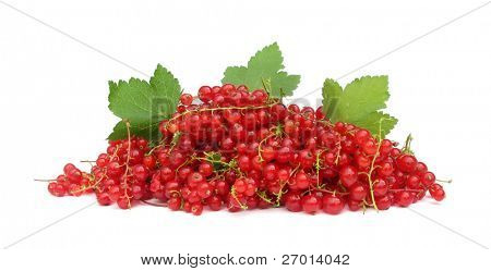 Redcurrant red currants with green leaves