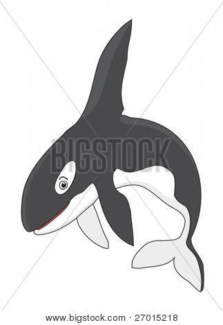 Orca Killer Whale cartoon vector illustration