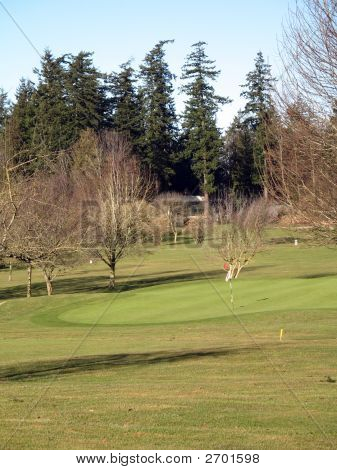 Golf Course Scenics 020