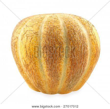 Zuckermelone Melone