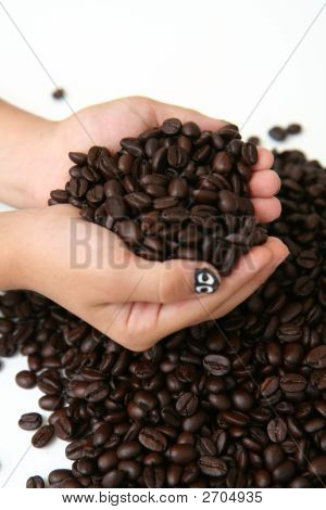 Coffee Beans Held In Hand