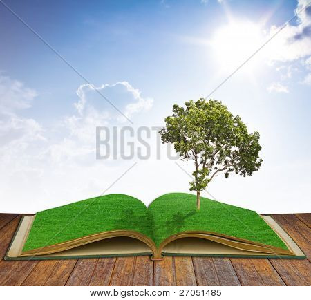 Tree growing from a book