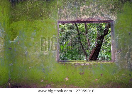 tropical convict prison moss-covered wall with window to dense jungle, vietnam