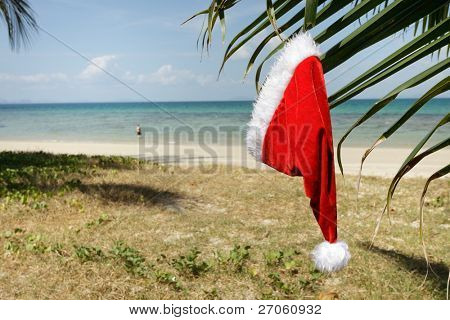 santa claus hat hanging on palm tree leaf in tropical beach
