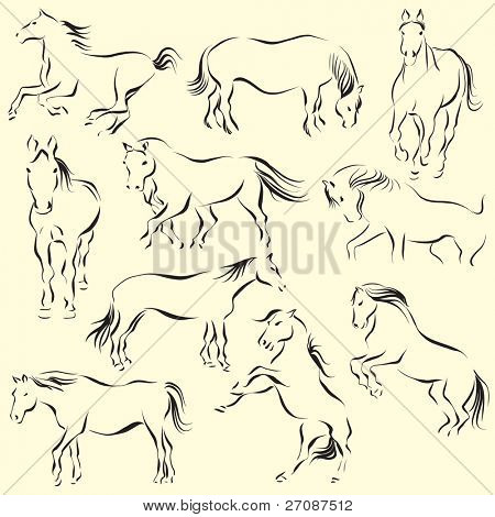 Set of ten beautiful horses