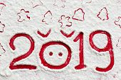 Pig 2019. Pig Nose And 2019 With Christmas Tree, Gingerbread Man, Stars Drawn On Flour Or Snow On Re poster