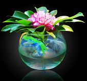 foto of flower vase  - Flowers with vase - JPG
