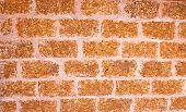 image of tora  - Laterite wall - JPG