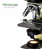pic of microscope slide  - A close - JPG