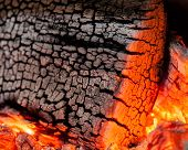 Burnt Wood Texture, Abstract Background poster