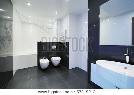 Modern luxury bathroom interior. No brandnames or copyright objects.