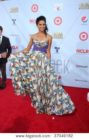 LOS ANGELES - SEP 16:  Victoria Rowell arrives at the 2012 ALMA Awards at Pasadena Civic Auditorium on September 16, 2012 in Pasadena, CA