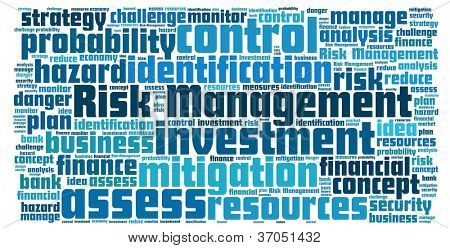 Risk Management in word collage