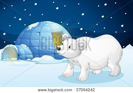 illustration of a white bear and igloo in dark night