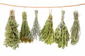 stock photo of condiment  - Variety of dried herbs hanging on a rope - JPG