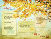 Autumn Journal - Background page with fall leaves on tree branches, falling leaves and worn, faded p