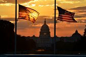 stock photo of senators  - United States Capitol building silhouette and US flags at sunrise  - JPG