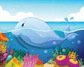 Постер, плакат: Иллюстрация рыб и кораллов в море